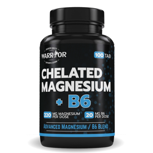 Chelated Magnesium+B6 tablety 100 tab 100 tab